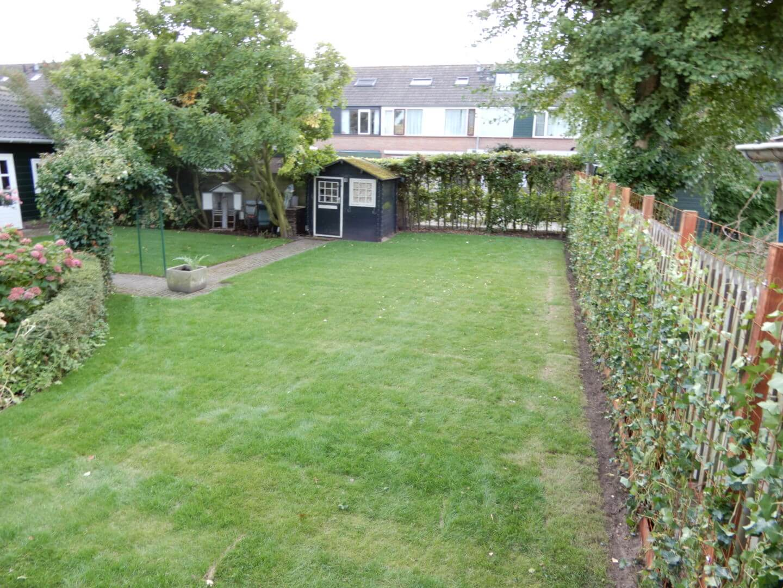 Tuinrenovatie Tienhoven